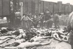 pogrom-iasi-4-640x428
