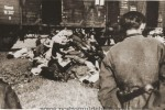 pogrom-iasi-5-640x428