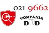 Război cu dăunători! www.0219662.ro şi compania DDD teajută!