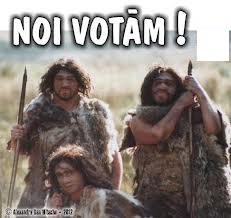 Manevre electorale