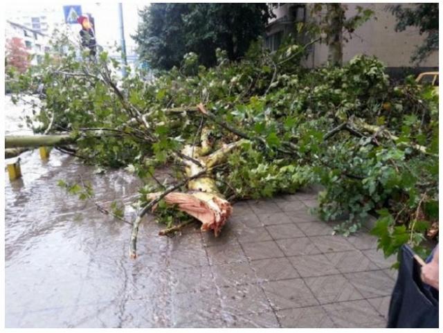 Inundaţii în Bulgaria