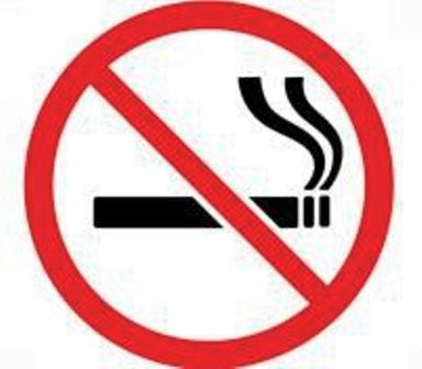 fumatul-in-locuri-publice-interzis-in-germania-10649